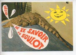 REF 288  : CPSM Carte Fantaisie Animaux : Crocodile - Éléphants