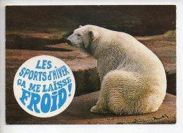 REF 288  : CPSM Carte Fantaisie Animaux : Ours Blanc - Éléphants