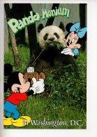 REF 290  : CPM U.S.A. Washington Dc Panda Monium Mickey Disney - Washington DC