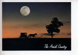 REF 289  : CPM U.S.A. Amish Country Greetings - Etats-Unis