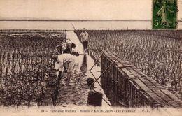 PARC AUX HUITRES - BASSIN D'ARCACHON LES TRAVAUX - Arcachon