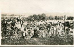 NIGERIA - RPPC - A Village Amongs Palms And Hills - Nigeria