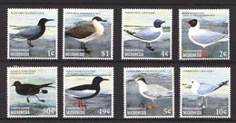 D230 MICRONESIA FAUNA BIRDS 1SET MNH - Seagulls
