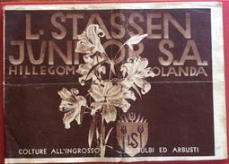 L. STASSEN JUNIOR S.A. - HILLEGOM , OLANDA CATALOGO BULBI FIORI ED ARBUSTI DEL 1912  RR - Pubblicitari