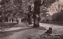 The Backs CAMBRIDGE_Vg Il 17.8.1910_ORIGINALE 100%-2 Scan- - Cheltenham