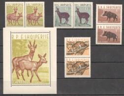 C564 1962 R.P.E SHQIPERISE,ALBANIA FAUNA ANIMALS !! MICHEL 280 EURO 1BL+2SET MNH - Stamps