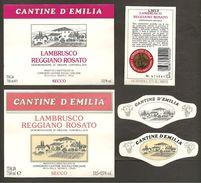 ITALIA - 2 Etichette Vino LAMBRUSCO REGGIANO Doc Cantine SOC.EMILIANE Di Villa Cella Rosato Dell'EMILIA - Villa - Vino Rosato