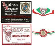 ITALIA - 2 Etichette Vino LAMBRUSCO REGGIANO Doc Cantine SOC.S.MARTINO IN RIO E LINI Di Correggio Rosato Dell'EMILIA - Vino Rosato