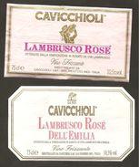 ITALIA - 2 Etichette Vino LAMBRUSCO DELL'EMILIA Cantine CAVICCHIOLI Di S.Prospero Rosato Dell'EMILIA - Vino Rosato