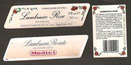 ITALIA - 2 Etichette Vino LAMBRUSCO DELL'EMILIA Cantine CCSE Di Reggio E. E MEDICI Di Reggio E. Rosato EMILIA - Vino Rosato