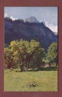 Glarus - Sommertage In BRAUNWALD - GL Glaris