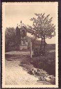 1930's Lithuania Lituanie Photo Foto Original Ziliai Lot #11199 - Lituania