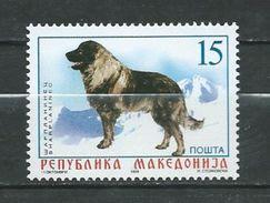 Macedonia / Macedonie 1999 Dogs.Chien De Berger Yougoslave De Charplanina. MNH - Macédoine