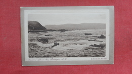 Island Bay  Wellington > New Zealand    Ref 2660 - New Zealand