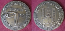 Médaille Abbaye De St Michel Cuxa  1966 - France