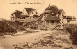 COXYDE S/Mer  -  Villas Dans Les Dunes - Koksijde
