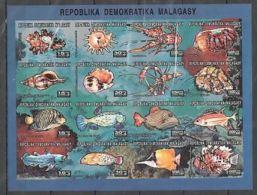 Madagascar Shells Coquillages Fish Poisson  Imperf MNH - Muscheln