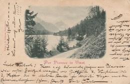 Der Plansee In Tirol Timbre Arrachee - Altri