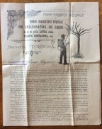AGRICOLTURA CATALOGO PUBBLICITARIO DEL 1907 G.TORBOSA SEREGNO  POMPE IRRORATRICI PER LOTTA DIASPIS PENTAGONA,ECC., - Pubblicitari