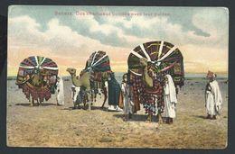 +++ CPA - Afrique - SAHARA - Des Chameaux Bondés Avec Leurs Guides   // - Sahara Occidental