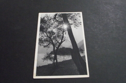 1160. Partizan Card, Yugoslavia  Censored - Jugoslawien