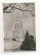 Photographie , 19.5 X 13.5 , Cathédrale D'Avignon , église  ,  Frais Fr : 1.45 Euros - Lugares