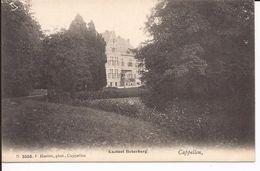 Cappellen: Kasteel Boterberg -   Kaart Collectie F. Hoelen (nummer 3358) - Kapellen