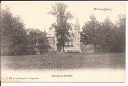 WOMMELGHEM: Château De Selsaete  -   Vroege Kaart Collectie F. Hoelen (nummer 584) - Wommelgem