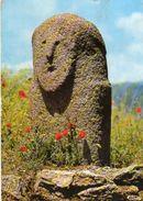 (Corse) - Ile De Beauté - Station Préhistorique De FILITOSA - Statue Menhir FILITOSA XIII - Altri Comuni