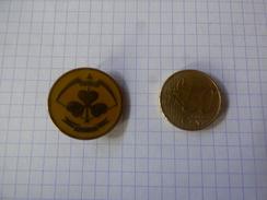 Pin's émaillé Et Broché Scoutisme - Padvinderij