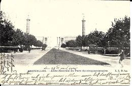 BRUXELLES (1040) : L'allée Centrale Du Parc Du Cinquantenaire, Vers L´avenue De Tervueren. CPA Précurseurs. - Etterbeek