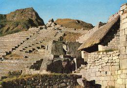 Peru - Machupicchu - Peru
