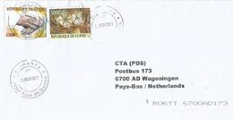 Guinee Guinea 2011 Conakry Pope John Paul II 1500 FG Traditional Drums 5000 FG Cover - Guinee (1958-...)