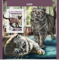 SOLOMON Isl. 2017 - Cats S/S - Katten