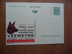 Belgie Carte Postale Not Used Veeweyde    Dogs Honden. - Honden