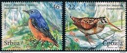 Serbia 2009 Fauna, Birds, Ecology, Joint Issue With Bulgaria, Scolopax Rusticola, Monticola Saxatilis, Set MNH - Gemeinschaftsausgaben