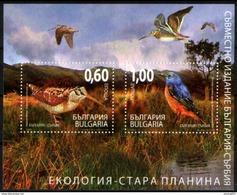 Bulgaria 2009 Fauna, Birds, Ecology, Joint Issue With Serbia, Scolopax Rusticola, Monticola Saxatilis, Block MNH - Gemeinschaftsausgaben