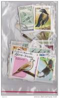 Lot Varié De + De 230 Timbres Du Monde Différents Thème OISEAUX - BIRDS - PAJAROS - VÖGELS - Briefmarken