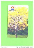 PARAGUAY - Chip Phonecard As Scan - Paraguay