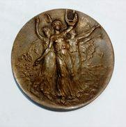 SUISSE - FRIBOURG - 14ème Fete Federale De Musique (1906) - Bronze / 35mm - Professionali / Di Società