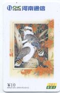MARTIN PECHEUR Oiseau Bird Vogel Télécarte Phonecard Telefonkarte (S.485) - Chine
