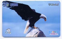 Aigle Rapace Oiseau Bird Vogel Télécarte Phonecard Telefonkarten (O -486) - Eagles & Birds Of Prey