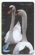 Oiseau Bird Vogel Télécarte Phonecard Telefonkarte (S.495) - Singapour