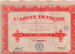 DIXIEME DE PART BENEFICIAIRE  - L'AZOTE FRANCAIS - 1929 - Aandelen