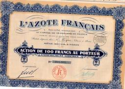 ACTION DE 100  FRANCS   - L'AZOTE FRANCAIS - 1926 - Shareholdings