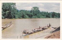 LAOS/ Luang-Prabang/ Course De Pirogues/ Réf:C5291 - Laos