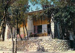 PIE 17-Des.V-5369 : SALAVAS  CAMP DE L'U.A.S.    P.T.T. LES BLACHAS - France