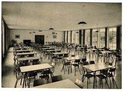 Lycée Mater Dei - 70 Avenue De L'Aviation - Bruxelles 15 - Réfectoire - 2 Scans - Woluwe-St-Pierre - St-Pieters-Woluwe