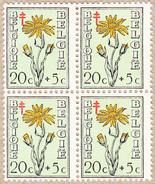 Bloc De 4 Timbres De 1949 N° 814 - Arnica Des Fagnes - 20 C + 5 C - België
