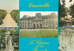 LUNEVILLE (54) - Luneville